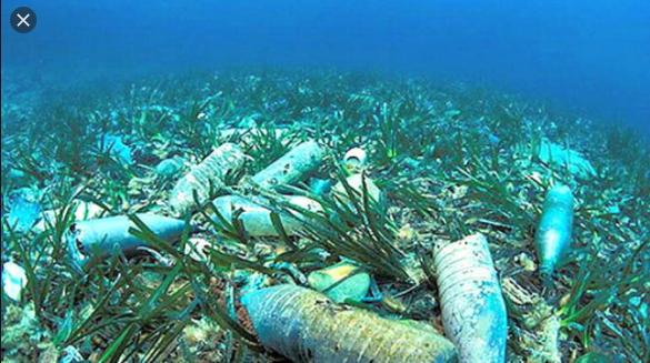 jelaskan apa yang dimaksud dengan pencemaran laut