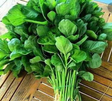 Sebutkan kandungan dan manfaat sayur bayam