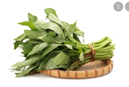 Sebutkan kandungan dan manfaat sayuran kangkung