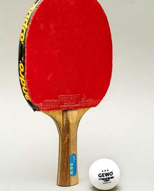 alat pemukul pada pemain tenis meja disebut