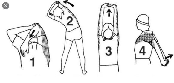 peregangan leher atau bahu termaksud tahapan